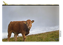 Cliffs Of Moher Brown Cow Carry-all Pouch