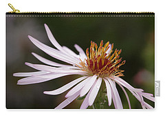 Carry-all Pouch featuring the photograph Climbing Aster by Paul Rebmann