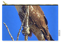 Hawk Close Up  Carry-all Pouch by Bobbee Rickard