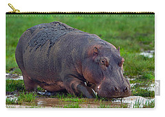 Close-up Of A Hippopotamus, Lake Carry-all Pouch by Panoramic Images