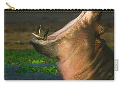 Close-up Of A Hippopotamus Yawning Carry-all Pouch