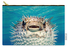 Close-up Of A Puffer Fish, Bahamas Carry-all Pouch