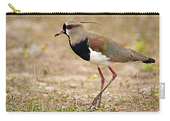 Close-up Of A Southern Lapwing Vanellus Carry-all Pouch
