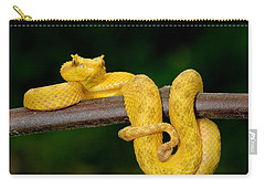 Close-up Of An Eyelash Viper Carry-all Pouch