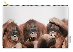 Close-up Of Three Orangutans Carry-all Pouch