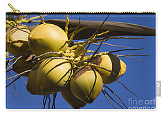 Coconut 1 Carry-all Pouch by Teresa Zieba