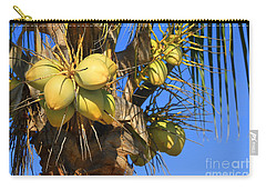 Coconut 2 Carry-all Pouch by Teresa Zieba