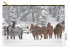 Cold Ponnies Carry-all Pouch by Diane Bohna