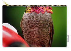 Carry-all Pouch featuring the photograph Colorful Male Anna Hummingbird On Perch by Jay Milo