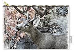 Carry-all Pouch featuring the photograph Columbia Blacktail Deer by Aaron Berg