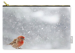 Coming In For A Landing Carry-all Pouch by Diane Alexander