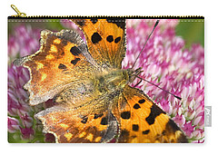 Comma Butterfly Carry-all Pouch by Richard Thomas