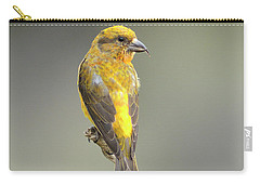 Common Crossbill Loxia Curvirostra Carry-all Pouch