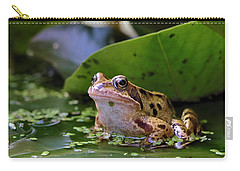 Common Frog Carry-all Pouch by Ron Harpham