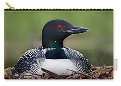 Common Loon On Nest British Columbia Carry-all Pouch by Connor Stefanison