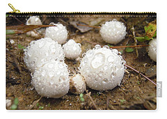 Common Puffball Dewdrop Harvest Carry-all Pouch