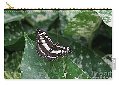 Common Sergeant Butterfly Carry-all Pouch