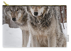 Companions Carry-all Pouch
