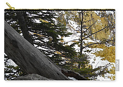 Carry-all Pouch featuring the photograph Composition At Lower Falls by Michele Myers