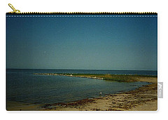 Carry-all Pouch featuring the photograph Cool Day For A Swim by Amazing Photographs AKA Christian Wilson