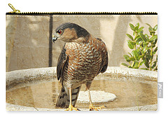 Cooper's Hawk At The Bird Bath Carry-all Pouch