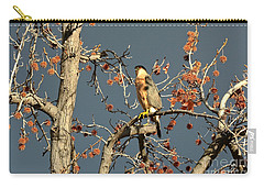 Cooper's Hawk Catches Sun In Stormy Sky Carry-all Pouch by Susan Wiedmann