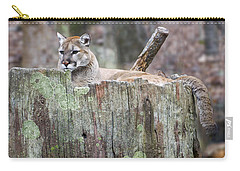 Cougar On A Stump Carry-all Pouch by Chris Flees