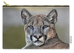 Carry-all Pouch featuring the photograph Cougar  by Savannah Gibbs