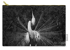 Carry-all Pouch featuring the photograph Great Egret Courtship Plumes  by John F Tsumas