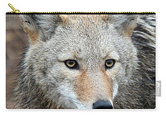 Coyote Carry-all Pouch by Athena Mckinzie