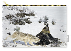 Carry-all Pouch featuring the photograph Coyote Biting A Grizzly by J L Woody Wooden