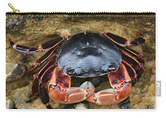Crabby Pants  Carry-all Pouch