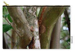 Carry-all Pouch featuring the photograph Crape Myrtle Branches by Peter Piatt
