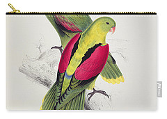 Crimson Winged Parakeet Carry-all Pouch by Edward Lear