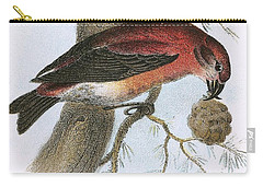 Crossbill Carry-all Pouch by English School