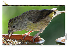 Crossbill Loxia Curvirostra Female Carry-all Pouch
