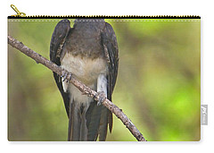 Crowned Hornbill Perching On A Branch Carry-all Pouch by Panoramic Images