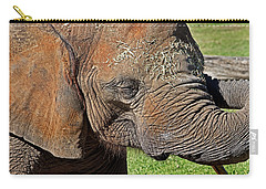 Cuddles Carry-all Pouch by Miroslava Jurcik
