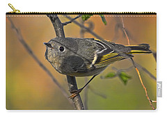 Carry-all Pouch featuring the photograph Curiosity by Gary Holmes