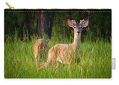 Curious Carry-all Pouch by Linda Unger