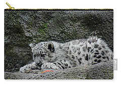 Curious Snow Leopard Cub Carry-all Pouch by Ramabhadran Thirupattur