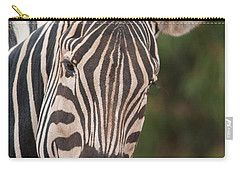 Curious Zebra Carry-all Pouch