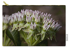 Carry-all Pouch featuring the photograph Curtiss' Milkweed #3 by Paul Rebmann