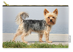 Cut Little Dog In The Sun Carry-all Pouch
