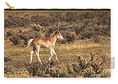 Cute Colt Wild Horse On Navajo Indian Reservation  Carry-all Pouch