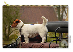Cute Dog On Carriage Seat Bruges Belgium Carry-all Pouch