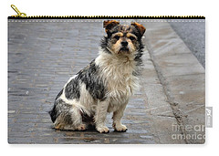 Cute Dog Sits On Pavement And Stares At Camera Carry-all Pouch