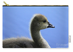 Cygnet Carry-all Pouch by Alyce Taylor