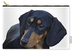 Dachshund Carry-all Pouch by Linsey Williams