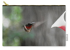 Daddy Humming Bird Carry-all Pouch by Belinda Lee